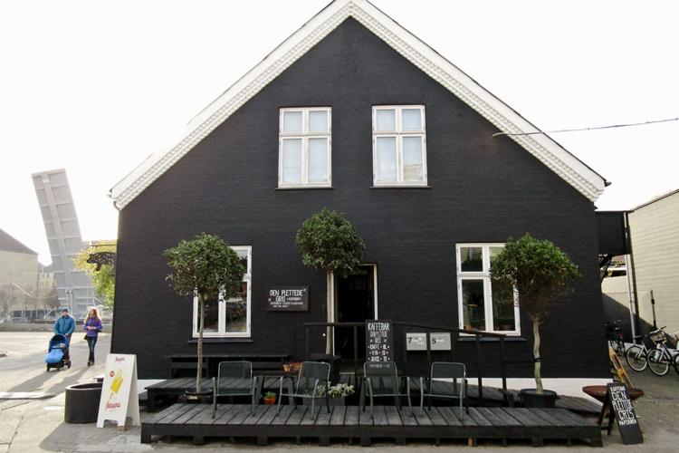 Future-Positive-Copenhagen-Den-Plettede-Gris-1